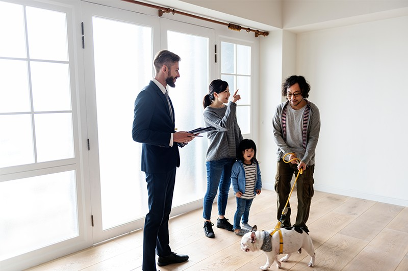 How ActivePipe Drives Traffic to Your OFIs and Auctions